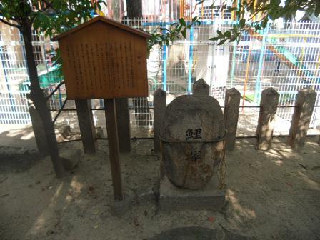 7 鯉 塚