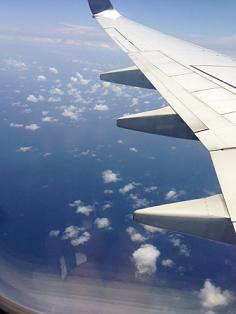 1 伊丹から一路奄美大島へ・・・
