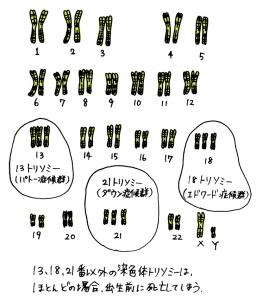 せん (2)