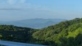 20140712原生の森040