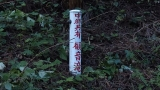 20140712原生の森055