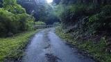 20140712原生の森056