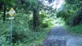 20140712原生の森066