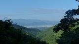 20140712原生の森070