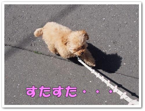 20140322_011.jpg