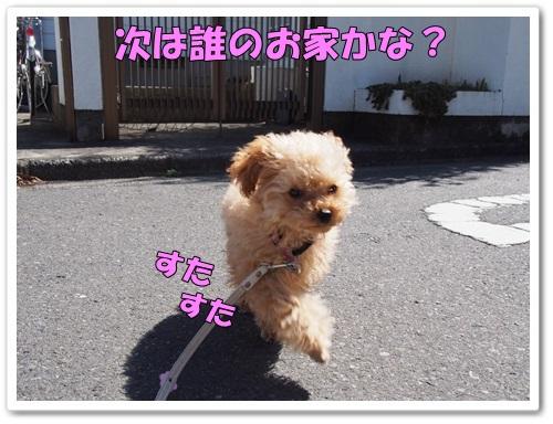 20140322_027.jpg
