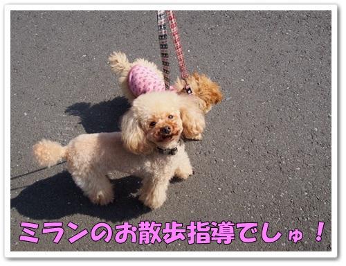 20140325_001.jpg