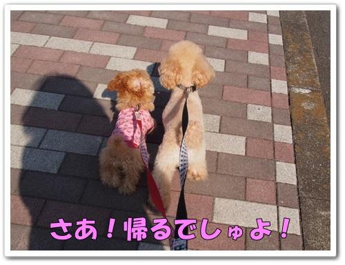 20140325_016.jpg