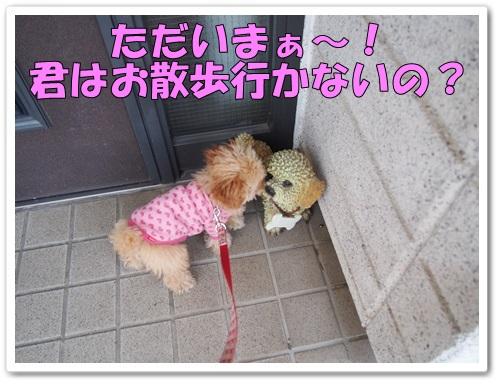 20140325_019.jpg