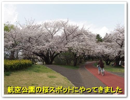 20140404_063.jpg