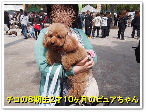 20140413_030.jpg