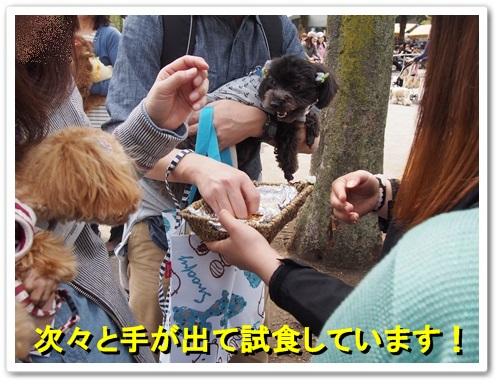 20140413_112.jpg
