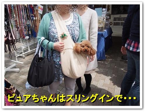 20140413_124.jpg