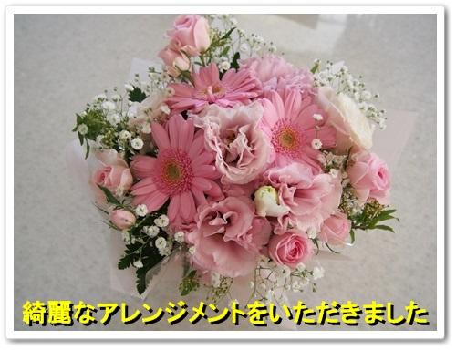 20140415_004.jpg