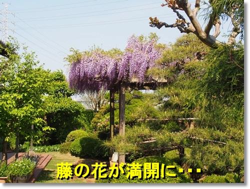 20140427_096.jpg