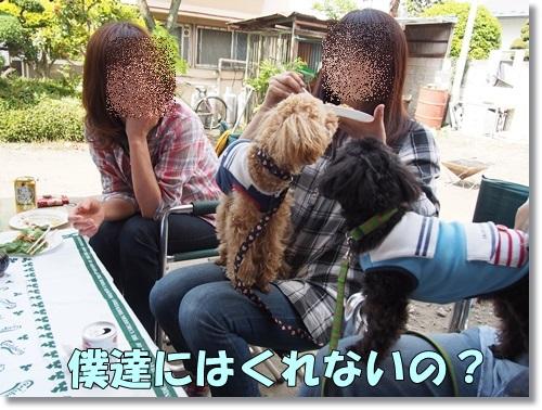20140504_097.jpg