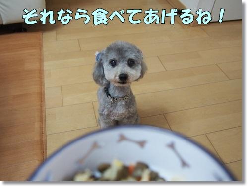 20140508_050.jpg
