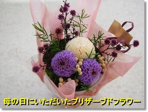 20140511_039.jpg