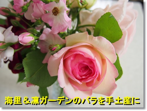 20140515_060.jpg