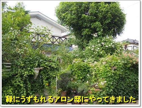 20140516_096.jpg