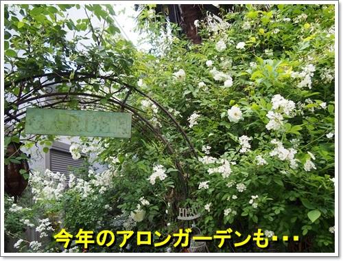 20140516_112.jpg