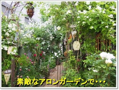 20140516_139.jpg