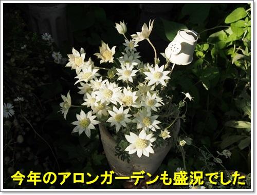 20140516_149.jpg