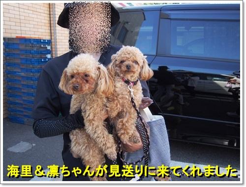 20140518_015.jpg