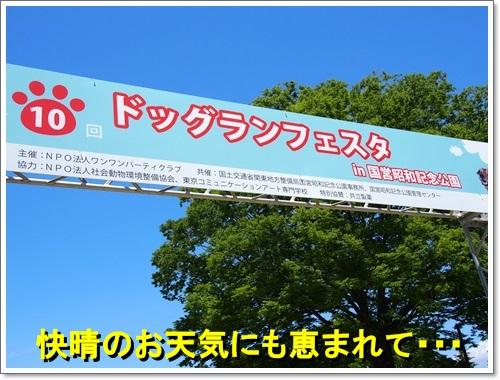 20140518_030.jpg