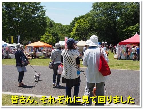 20140518_034.jpg