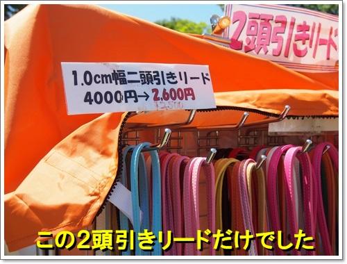 20140518_037.jpg