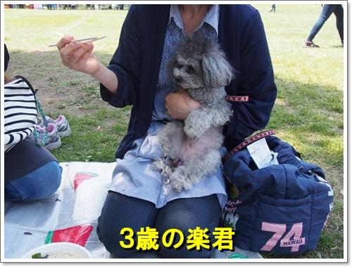 20140518_054.jpg