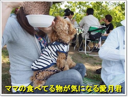 20140518_058.jpg