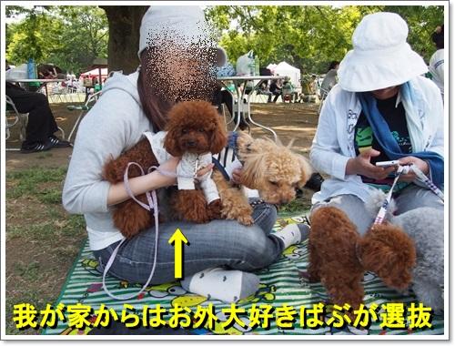 20140518_070.jpg