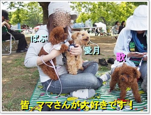 20140518_071.jpg