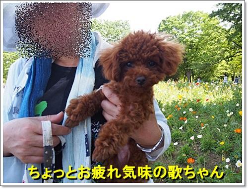 20140518_086.jpg