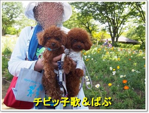 20140518_105.jpg