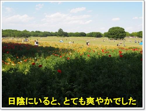 20140518_113.jpg