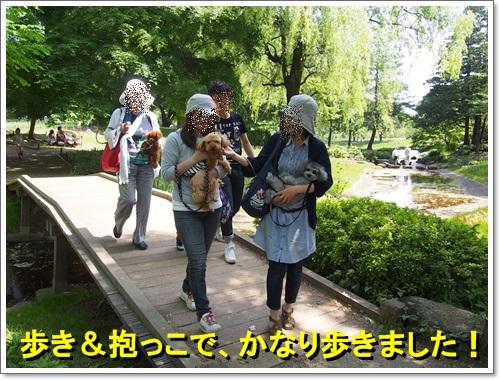 20140518_116.jpg
