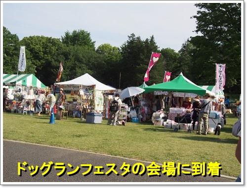 20140518_128.jpg