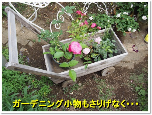 20140525_018_01.jpg