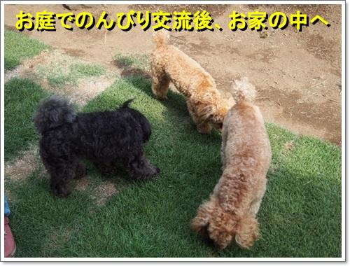 20140602_061.jpg