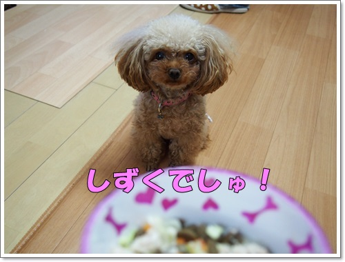20140610_146.jpg