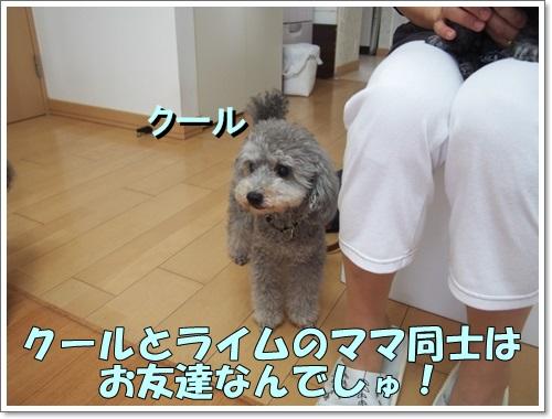 20140617_123.jpg
