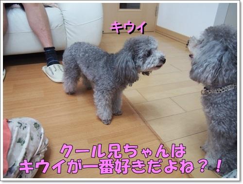 20140617_124.jpg
