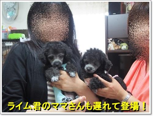 20140617_134.jpg