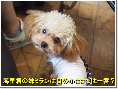 20140619_126.jpg