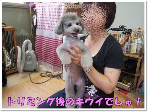 20140626_042.jpg