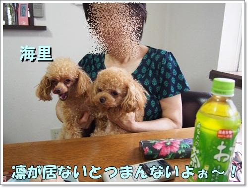 20140701_082.jpg