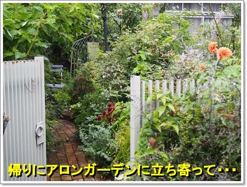 20140704_025.jpg